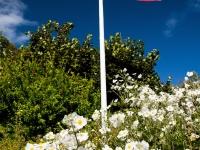 Flag garden