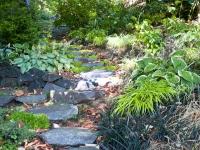 Santica shade garden